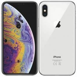 Apple iPhone Xs 512 GB - silver (MT9M2CN/A)