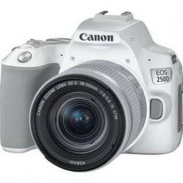 Canon EOS 250D + 18-55 IS STM (3458C001) bílý