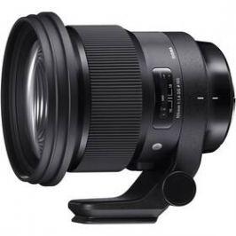 Sigma 105 mm f/1.4 DG HSM ART Nikon (SI 259955) černý