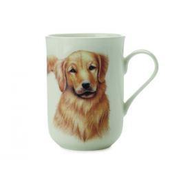 Maxwell & Williams Cashmere Dog Golden Retriever 300 ml
