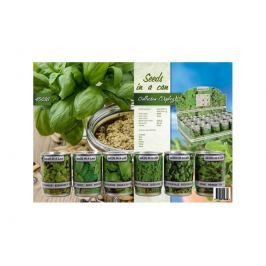 Sazeničky bylinek,eko balení v hlinikových plechovkách No brand 45636