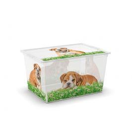 C-Box Puppy & Kitten XL, 50l KIS 84180002057