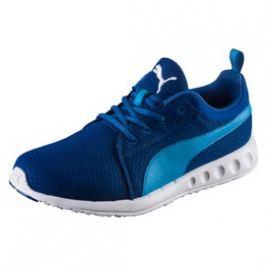 Pánské běžecké boty Puma Carson Mesh TRUE BLUE-BLUE DAN