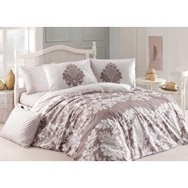Homeville Povlečení 100% bavlna Purely beige se dvěma povlaky na polštář - 140x220 / 50x70+70x90