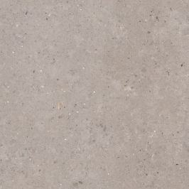 Dlažba Pastorelli Biophilic grey 120x120 cm mat P009411