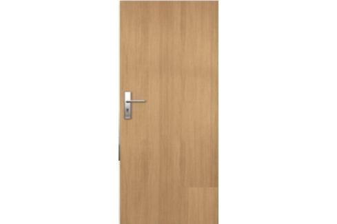 Vstupní dveře Entry 80 cm, pravé, otočné ENTRYJ80P Dveře